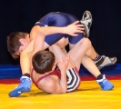 Freestyle wrestling